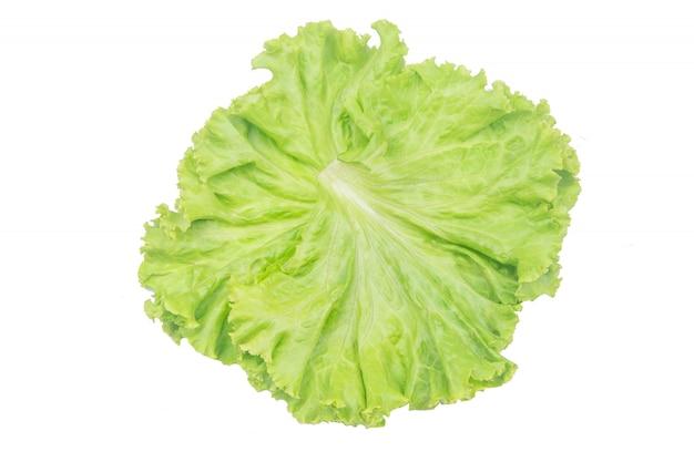 Foglia di insalata. lattuga isolata su bianco