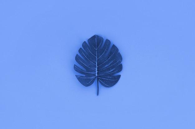 Foglia di monstera blu tropicale