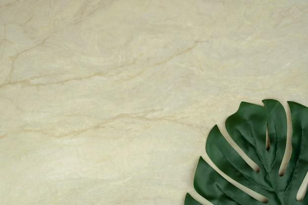 Foglia di monstera su marmo marrone opaco vuoto