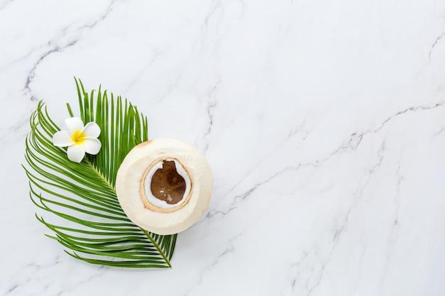 Foglia di palma, fiore e noce di cocco su marmo bianco