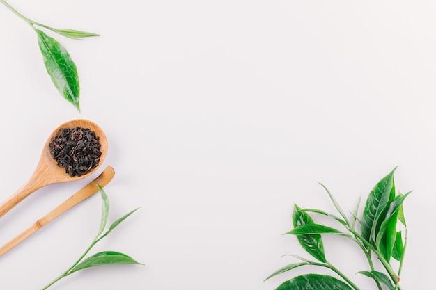 Foglia di tè verde d'annata isolata su fondo bianco