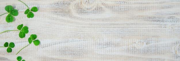 Foglia di trifoglio buon giorno di san patrizio. messa a fuoco selettiva