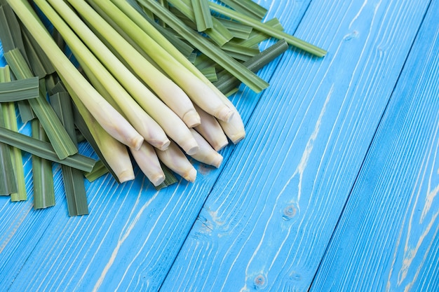 Foglia fresca dell'erba della citronella o della citronella su struttura di legno blu