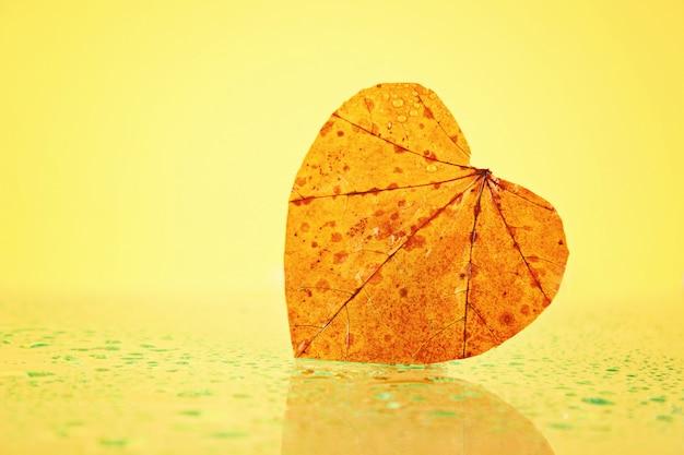 Foglia gialla di autunno sotto forma di un cuore su un vetro piovoso.