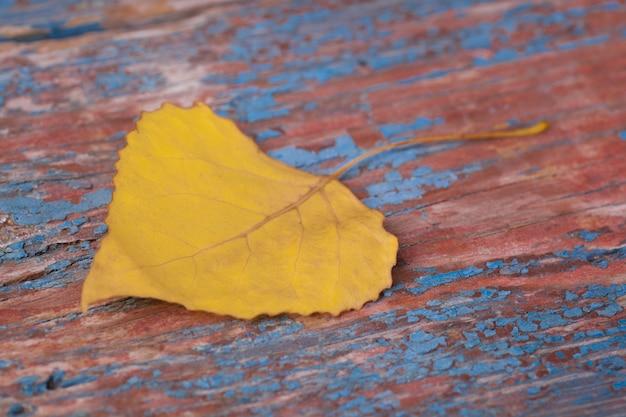Foglia gialla di autunno su backgound di legno