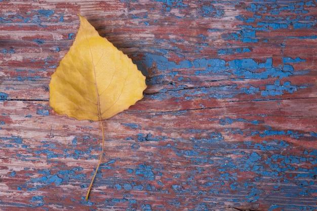 Foglia gialla di autunno su fondo di legno