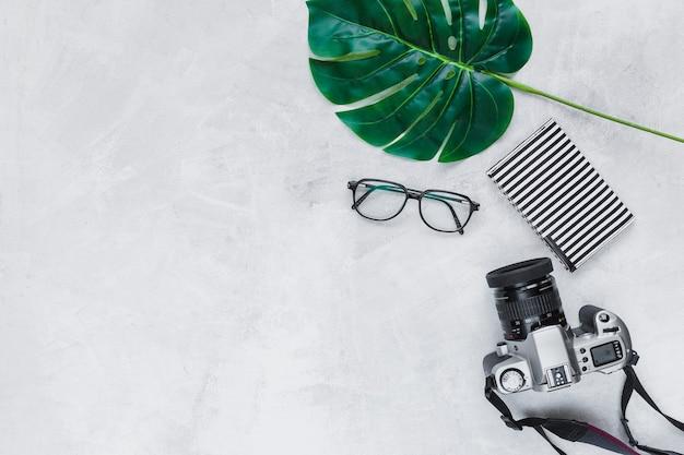 Foglia, occhiali, portafogli e macchina fotografica di forma del cuore su fondo grigio