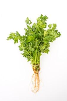 Foglia organica fresca spezia vegetariano