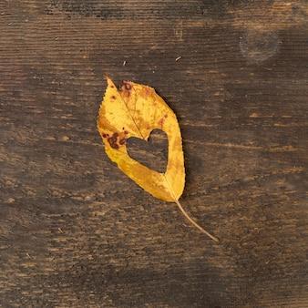 Foglia piatta distesa con taglio a forma di cuore