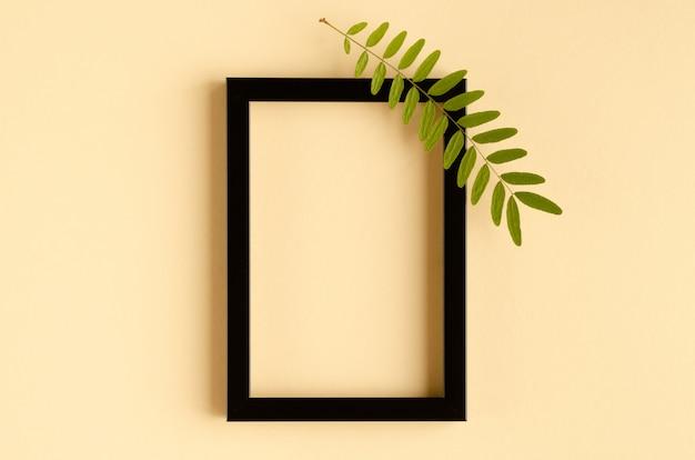 Fogliame verde, ramo di acacia e composizione nera nella struttura di legno su fondo beige.