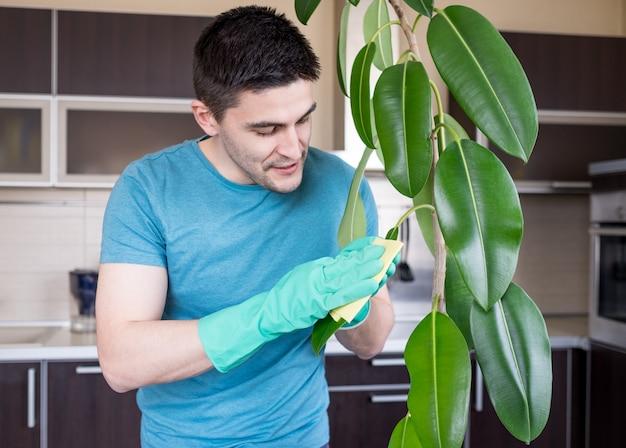 Foglie adulte di pulizia dell'uomo in cucina