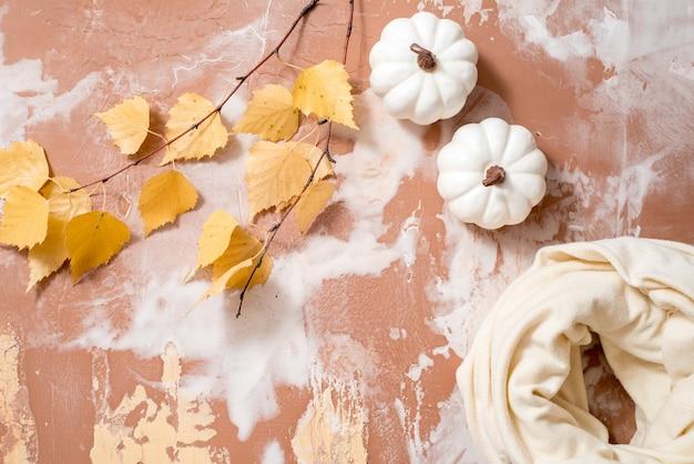 Foglie asciutte della betulla di giallo di autunno su un calcestruzzo. autunno accogliente