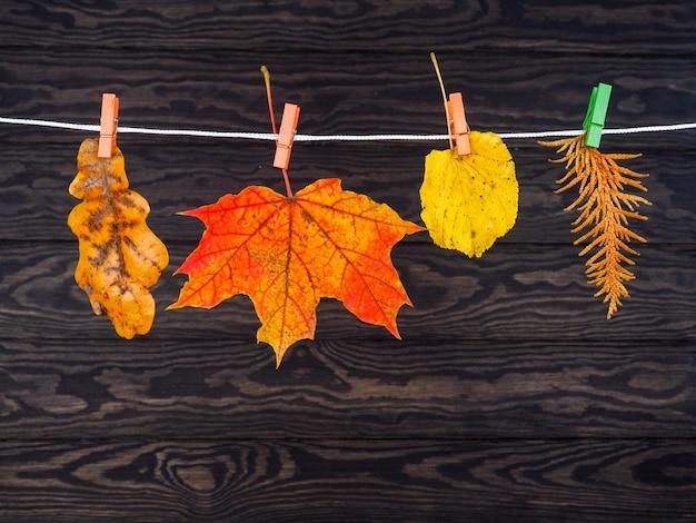 Foglie d'autunno appese al filo del bucato su legno