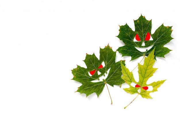 Foglie di acero autunno sotto forma di facce con gli occhi rossi.
