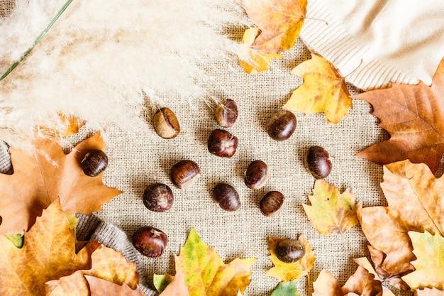 Foglie di acero e castagne di autunno isolate su un marrone. vista dall'alto. disteso.