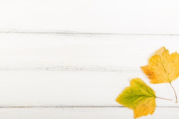 Foglie di autunno di vista superiore su fondo di legno con lo spazio della copia