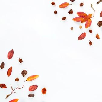 Foglie di autunno pianeggianti con spazio di copia