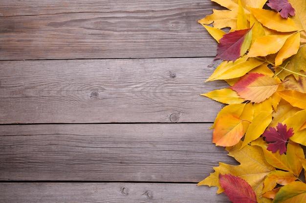 Foglie di autunno rosse ed arancio sulla tavola grigia