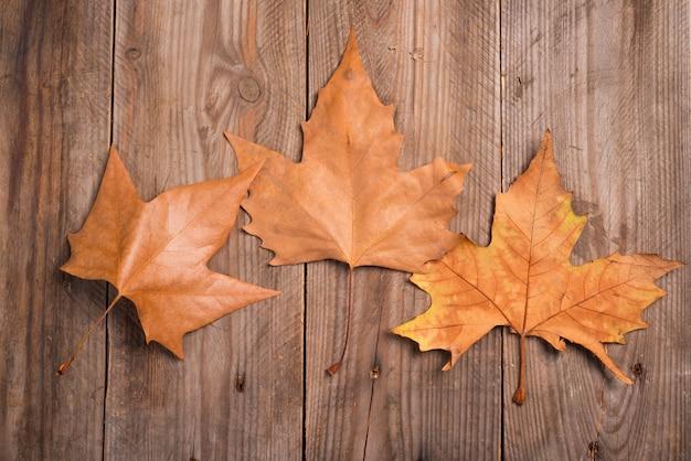 Foglie di autunno su uno sfondo in legno