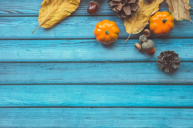 Foglie di autunno, zucche decorative, ghiande e coni sopra fondo di legno blu