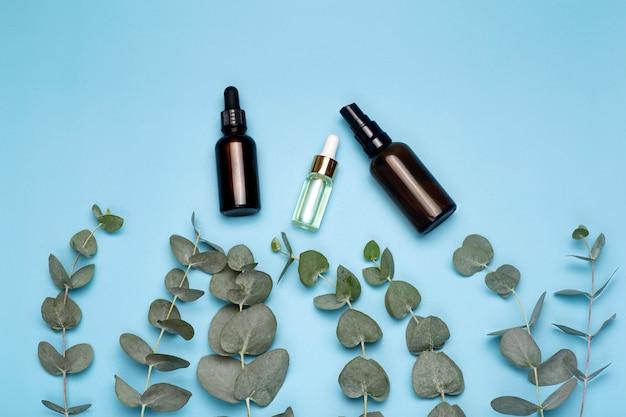 Foglie di eucalipto con bottiglie di olio su uno sfondo colorato