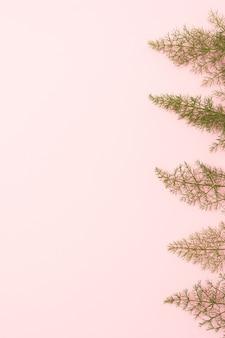 Foglie di finocchio con sfondo rosa spazio copia
