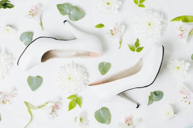 Foglie di fiori bianchi con foglie su sfondo bianco
