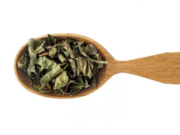 Foglie di mirtillo essiccate in un cucchiaio di legno su un bianco.