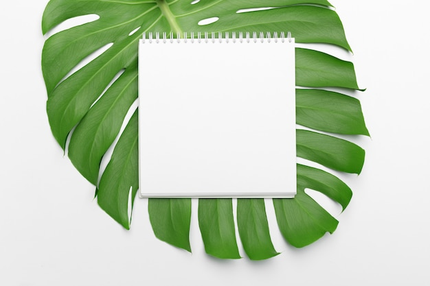 Foglie di palma e un taccuino di carta con copyspace