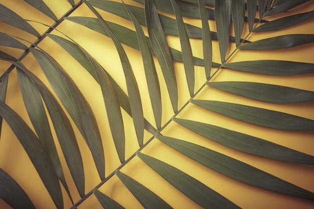 Foglie di palma esotiche tropicali sulla parete gialla.