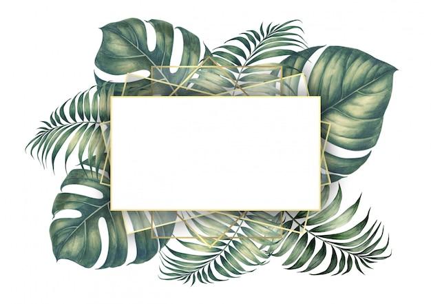 Foglie di palma tropicale.