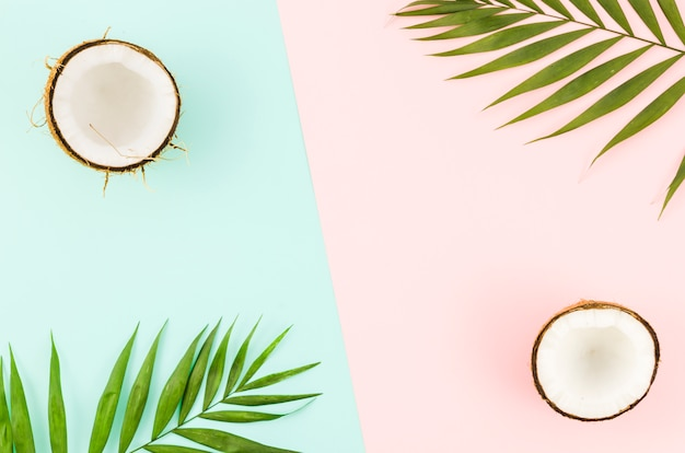 Foglie di palma verde con noci di cocco sul tavolo luminoso