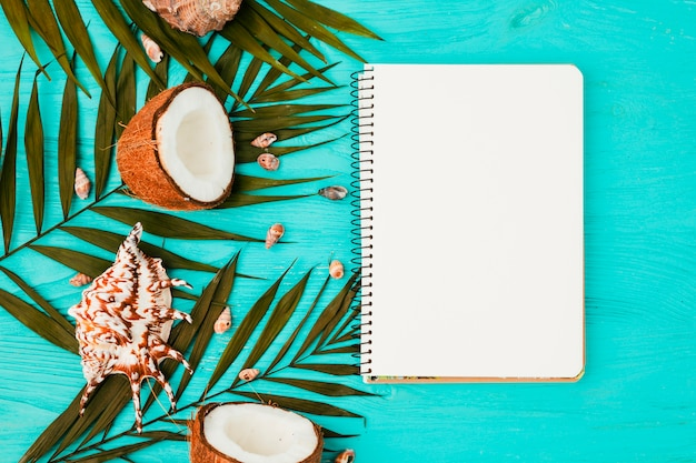 Foglie di piante e noci di cocco vicino a conchiglie con notebook