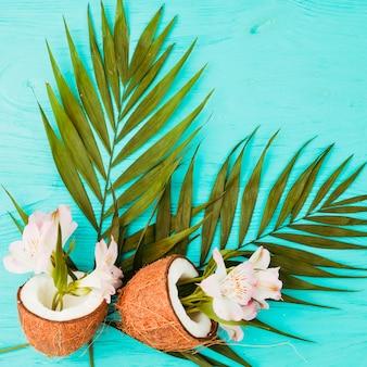 Foglie di piante e noci di cocco vicino a fiori freschi