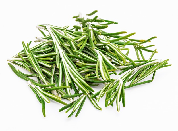 Foglie di rosmarino verde appena tagliate (rosmarinus officinalis). ingrediente isolato di cucina mediterranea e rimedio casalingo curativo.