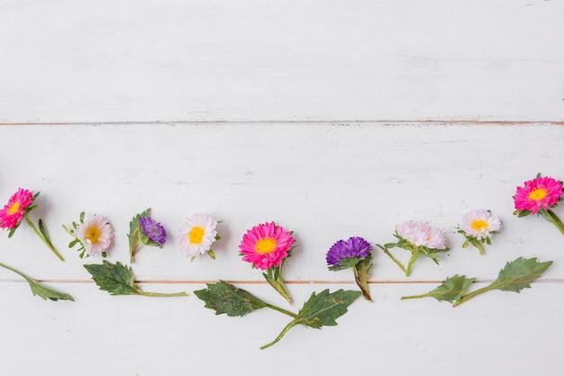 Foglie e fiori minuscoli sul ripiano del tavolo di legno