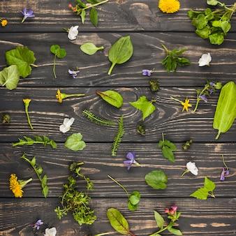 Foglie e fiori su fondo in legno martellata