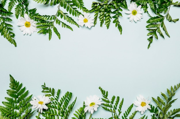 Foglie e fiori su sfondo azzurro