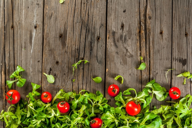 Foglie e pomodori di insalata