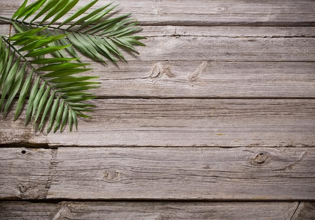 Foglie esotiche sul vecchio tavolo di legno