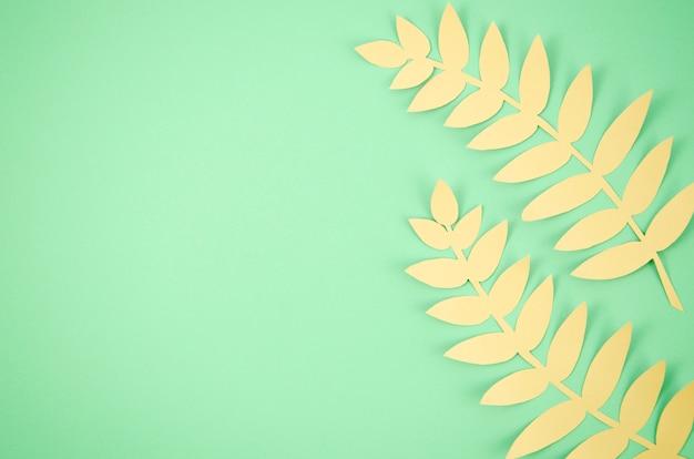 Foglie lunghe carine con sfondo verde spazio copia