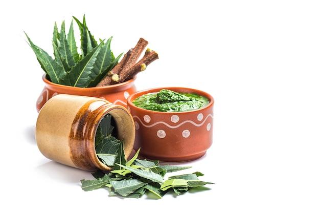 Foglie medicinali di neem con pasta e ramoscelli su superficie bianca