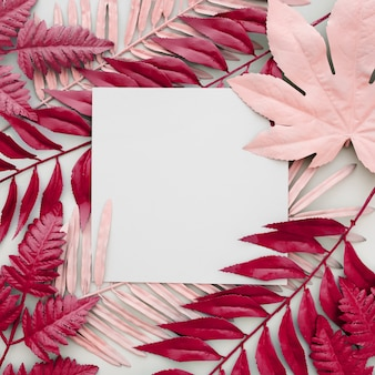 Foglie rosa tinte su sfondo bianco con una cornice vuota