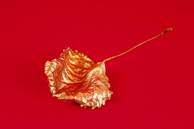 Foglie secche autunnali dipinte con vernice oro su un rosso. vista dall'alto. di moda. autunno d'oro.
