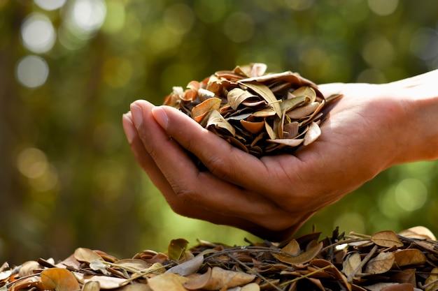 Foglie secche per il compostaggio per l'agricoltura, concetti agricoli.