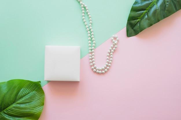 Foglie verdi con scatola e collana su due sfondo colorato