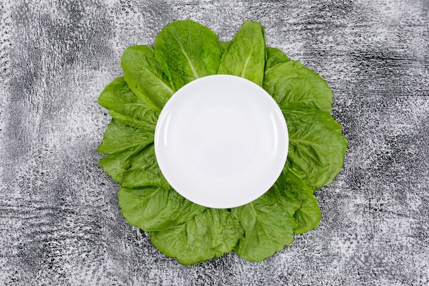 Foglie verdi della lattuga sotto il piatto bianco vuoto