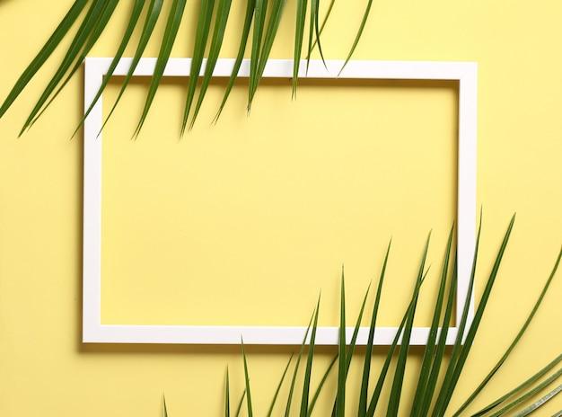 Foglie verdi sulla cornice bianca su sfondo giallo pastello