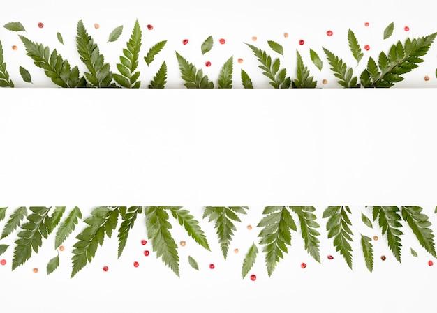 Foglie verdi tropicali di vista superiore con lo spazio della copia