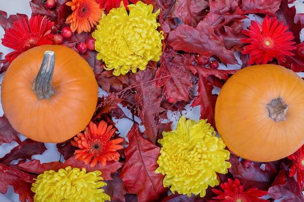 Foglie, zucche e fiori secchi di quercia marrone, rossa e viola.